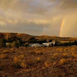 659 Lovedale Farm In Namibia Thm