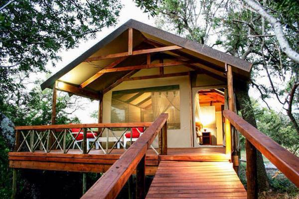 1124 Luxury Safari Tents Ths & Lion Tree Top Lodge - South Africa - Hoedspruit - South Africa