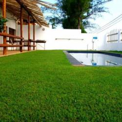 1349 Casa Blanca Pool Area Thm