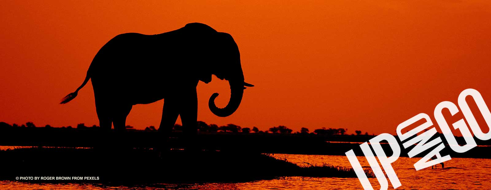 upandgo-accommodation-botswana-elephants-sunsets.jpg